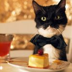Bowtie and Cheesecake