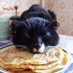 MY Pancakes!