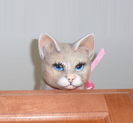 The Cabinet Cat