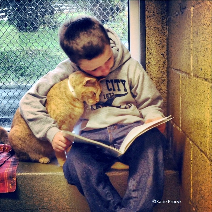 reading to cat